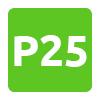 P25 Dusseldorf Airport